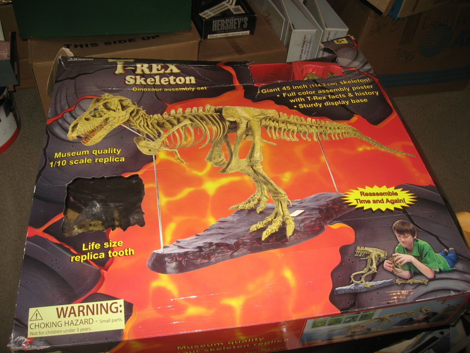 B.C. BONES T-REX SKELETON 45  long Dinosaur Model kit 1 10 Scale - NEW