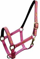 Pink Horse Size Nylon Halter W running Horse Overlay Horse Tack