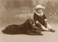 FLAT COATED RETRIEVER DOG GREETINGS NOTE CARD SMALL EDWARDIAN BOY AND DOG