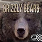 Grizzly Bears by Sheila Griffin Llanas (Hardback, 2013)