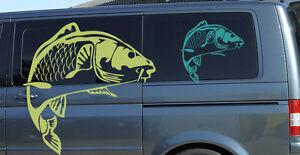 Karpfen Aufkleber Fisch Angeln Auto Boot Wohnmobil Fischen Sticker