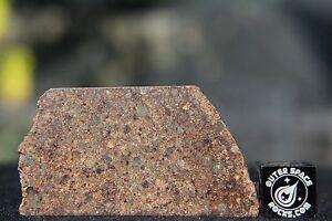NWA-10686-L3-Primitive-Chondrite-Meteorite-9-1-gram-part-slice
