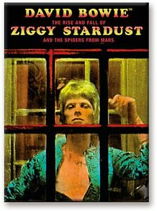 David-Bowie-Ziggy-Stardust-Back-Cover-Phone-Box-steel-fridge-magnet-nm
