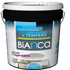 Pittura Murale Bianca Luxury  jogja 2022