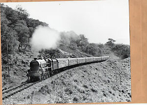 West-Highland-44932-fort-William-Mallaig-1986-Original-10-x8-photo