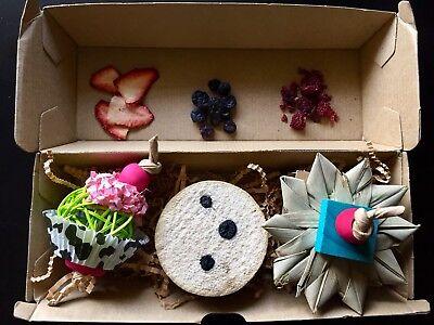 Pet Rabbit Guinea Pig Palm Logic Toy Cardboard Wood Chew Bunny Blossom Toss