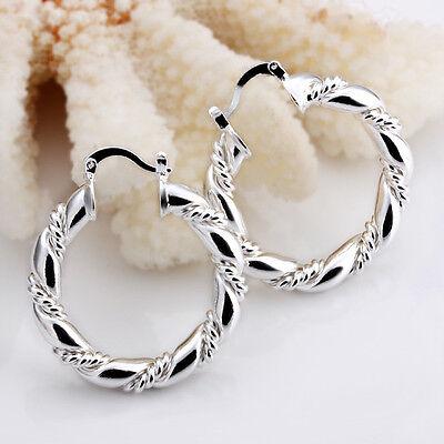 Special Price 925Sterling Silver Jewelry Wrest Rope Woman Earrings Hoop E156
