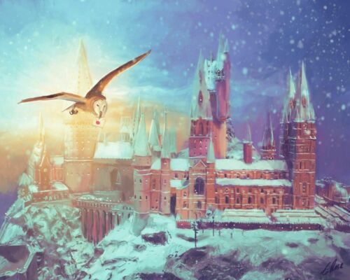 Potter Owl Flying Over Hogwarts Paint By Number DIY Painting