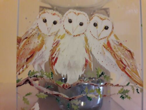 A Stunning Country Living Barn Owl Melt//oil Burner
