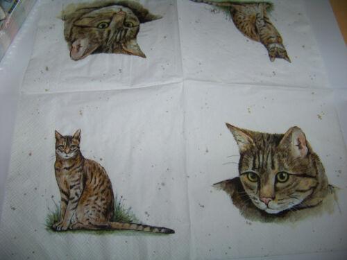 3  Servietten Farmer Friends Cat Katze Napkins