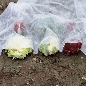 Tessuto non tessuto orto velo protezione per orto e giardino 2m x 10m ebay - Telo tessuto non tessuto giardino ...