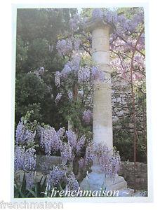 NEW-UNUSED-French-Printed-Postcard-Jardins-de-Provence-Garden-Wisteria-Avignon