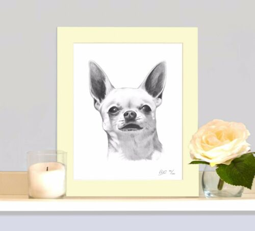 CHIHUAHUA Art Print Drawing MOUNTED 12x10 Picture Present Gift For Toy Dog Lover