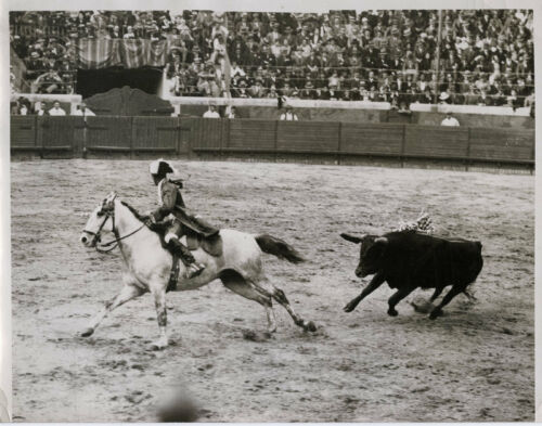 1930's PRESS PHOTOGRAPH TOREADOR BEING PURSUED BY BULL SPAIN