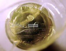 2016 Canada $1 Dollar Regular Loon Loonie Coins Original 25-Coin Roll from RCM