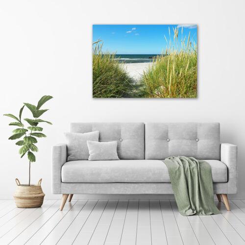 Acrylglas-Bild Wandbilder Druck 100x70 Deko Landschaften Küsten-Dünen