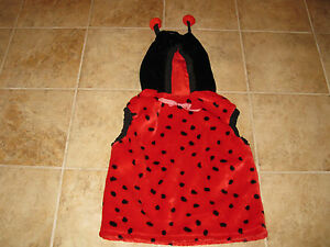 YOUTH-CHLD-SIZE-LADY-BUG-HALLOWEEN-COSTUME-EXCELLENT-CONDITION