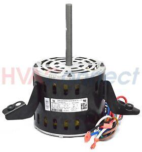 OEM Carrier Bryant Payne 1//3 HP 115 Volt Furnace BLOWER MOTOR HC41TE113