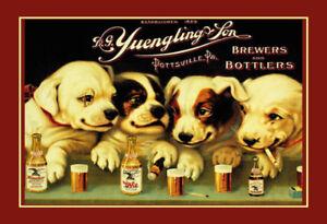 Yuengling-amp-Son-Ale-And-Cerveza-Dogs-Letrero-de-Metal-Cartel-Lata-20-X-30CM