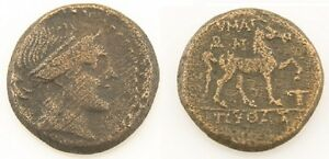 Münzen Griechische Münzen Freundschaftlich 300-200 Bc Greek Ae20 Münze Vf Aeolis Amazon Kyme Cyme Pferd Sear #4192 L&k #396