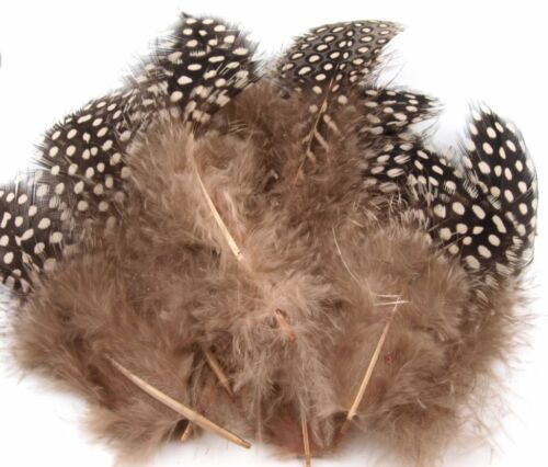 Hahnenfedern Federn Hahn 8-13cm basteln verzieren Streuartikel Hahnenfeder