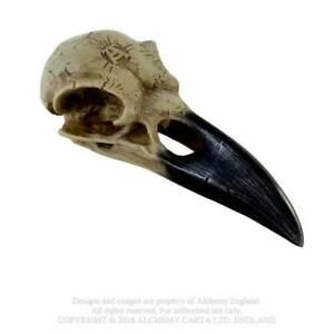 Corvus-Alchemica-Raven-Skull-Gothic-Mystic-Figurine-Resin-Crown-Head-Ornament