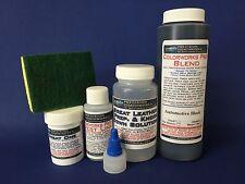 Colorworks Pro Leather/Vinyl Repair Kit for auto/truck interiors- BMW Black