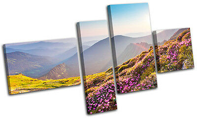 Highlands Rhododendron Landscapes MULTI CANVAS WALL ART Picture Print VA