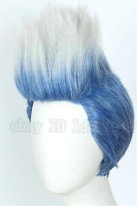 Details about Kid Hades Wig Descendants 3 Blue Sliver Cosplay Halloween  Costume Wig for Child