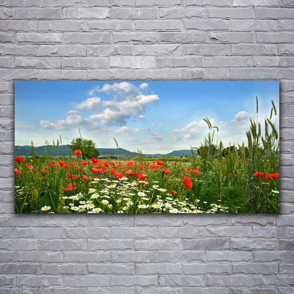 - Tela Immagini Immagine Parete Tela Stampa d'Arte 120x60 prato fiori natura
