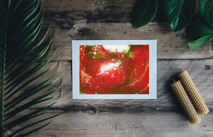 Red-and-green-abstract-Print-of-painting-In-7-034-x-5-034-unique-gift-ID-1388