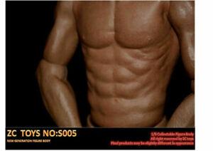 ZC TOYS 1/6 Man Body S005 Narrow Shoulder Asian Muscular