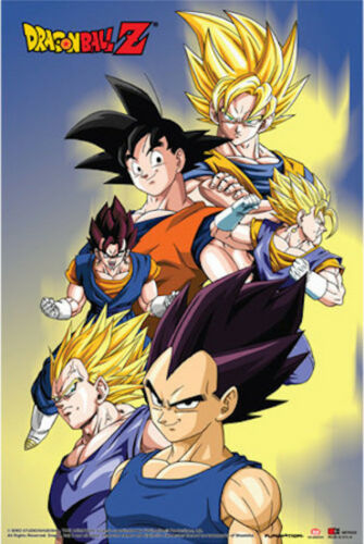 DRAGON BALL Z CAST POSTER 24x36-51567