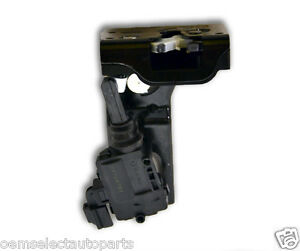 Image is loading OEM-NEW-2009-2012-Ford-Escape-Rear-Tailgate-  sc 1 st  eBay & OEM NEW 2009-2012 Ford Escape Rear Tailgate Handle Latch + Door Lock ...