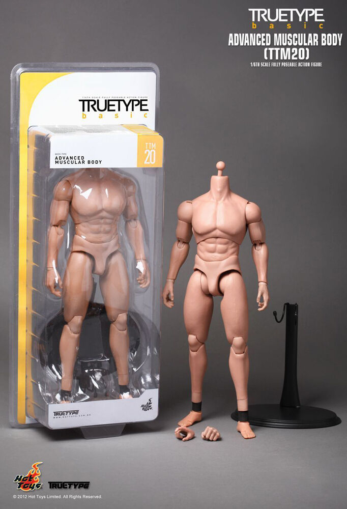 Hot Toys TTM20 1 6 Scale Posable Truetype Advanced Muscular Body 100% Authentic