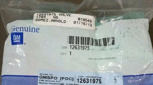 OEM GM 3.6L Engine Intake Valve 12631975 NEW