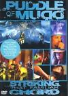 Striking That Familiar Chord von Puddle of Mudd (2005)