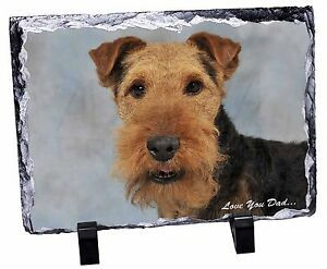 Welsh Terrier Dog Love You Dad Photo