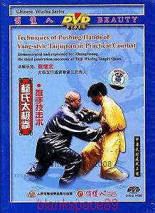 DVD-Li-Derun-Yang-Style-Taichi-Taijiquan-Pushing-Hands-in-Practicl-Combat