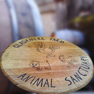 Recycled Rustic Solid Oak Wooden Whiskey Cask Lids pack of 5 Vintage Tray