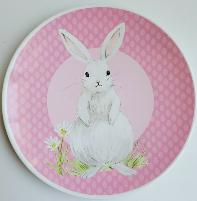 Pottery Barn Kids Set Of 2 Springtime Bunny Daisy Plates