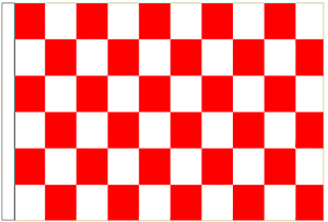 Red And White Check 5' x 3' Large Sleeved Flag