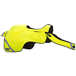 Equisafety Men's Polite Winter Fluorescent Exercise Rug-High Viz Yellow, Pony