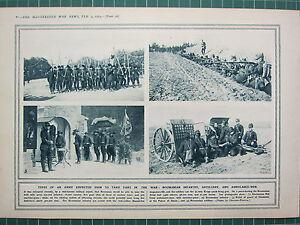 1915 Première Guerre Mondiale G.mondiale 1 Imprimé ~ Roumanian Infanterie Ladt4drg-07235405-455815339