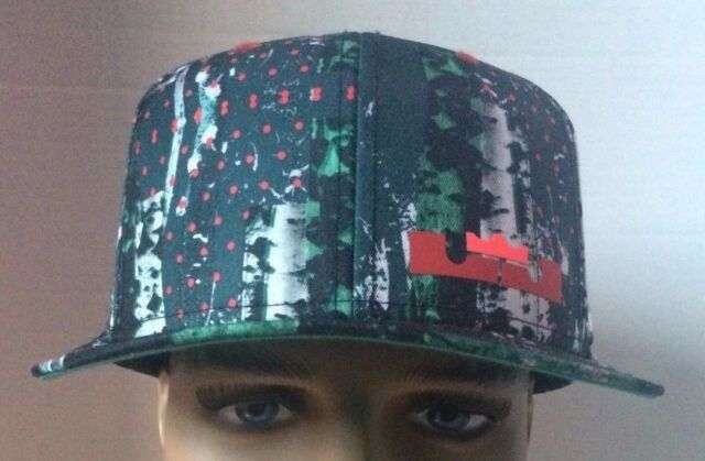 competitive price dd6ef 7c5f1 Nike True Lebron 12 Snapback Hat Cap Limited Edition Christmas Akron Birch