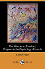 The Wonders of Instinct; Chapters in the Psychology of Insects (Dodo Press) by J Henri Fabre, Jean-Henri Fabre (Paperback / softback, 2007)