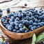 100-Pcs-Graines-AMERICAN-GIANT-Myrtille-fruit-Bonsai-RARE-Arbre-Maison-Jardin-Neuf-E miniature 1