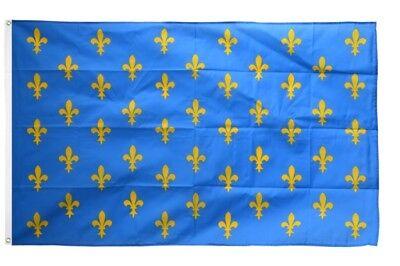 Frankreich Lilienwappen blau Banner französische Fahnen Flaggen 30x45cm