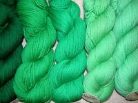 Peacock Green Family Paternayan Wool 3ply Persian Yarn Needlepoint Crewel
