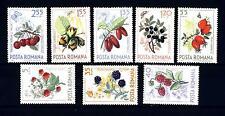 ROMANIA - 1964 - Frutti di bosco